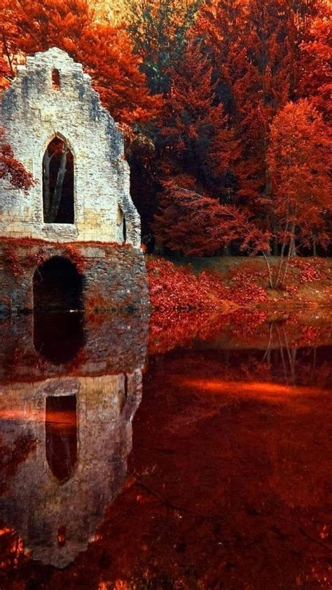 Red Autumn In Chamonix, Rhone Alpes, France Pictures