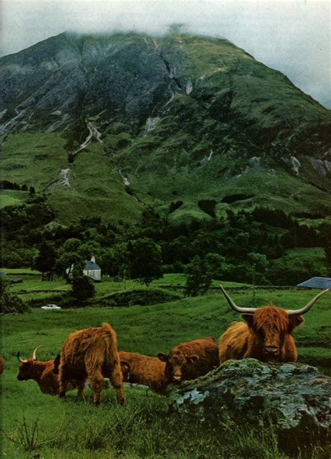69 best images about Scotland & Ireland on Pinterest | The