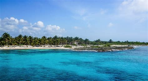 21 Things To Do in Cozumel: Mexico's Top Island - Goats On