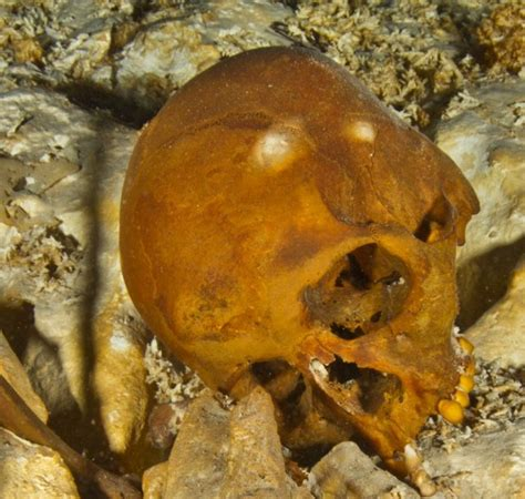 Submerged skeleton suggests early humans only found the