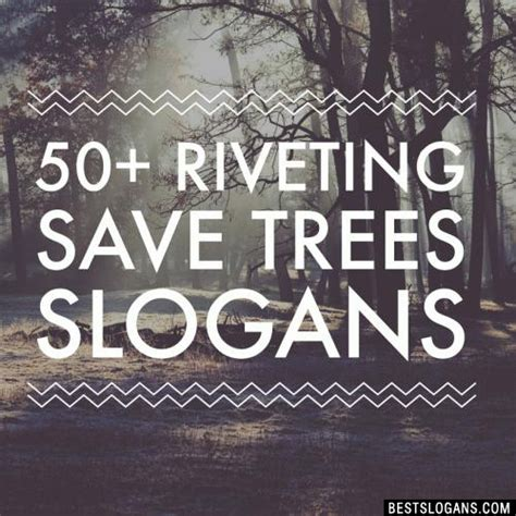 60+ Amazing Save Trees Slogans In English For Kids